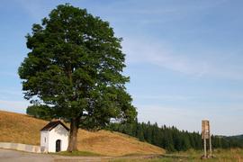 Kapliczka przydrożna, Przełęcz Puchaczówka