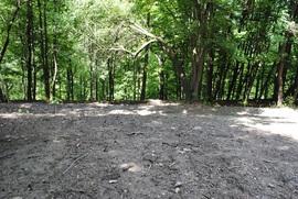 Góra Parkowa w Bystrzycy Kłodzkiej