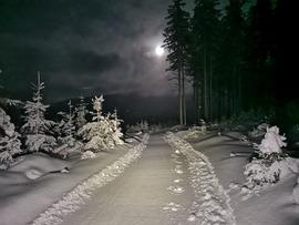 Galeria Trasy narciarskie Międzygórze